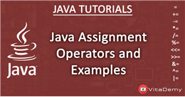 Java Assignment Operators and Examples