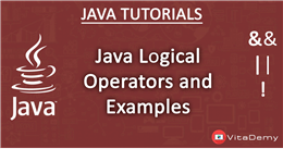 Java Logical Operators and Examples