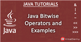 Java Bitwise Operators and Examples